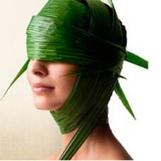 Немного об альгинатных масках