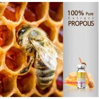 Сыворотка с Экстрактом Прополиса 100% (Carestory Propolis Extract 100)