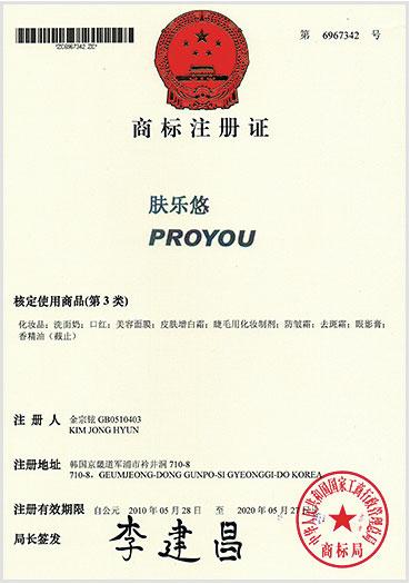 Pro You регистрация бренда 4