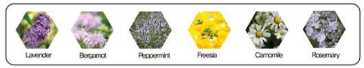 Растительные экстракты Сыворотки с коллоидным золотом Dr.Hedison Gold Activation Ampoule Serum