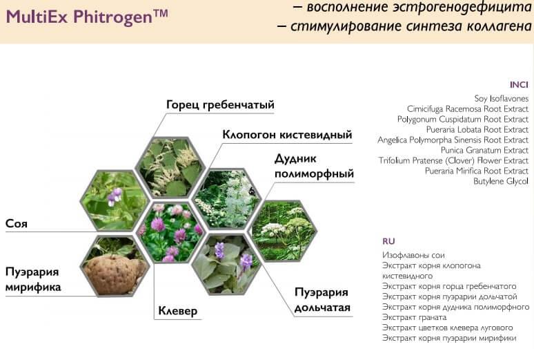 растительный комплекс в составе ProYou Lifting Eye Cream